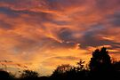 Fire In The Sky by Vicki Spindler (VHS Photography)