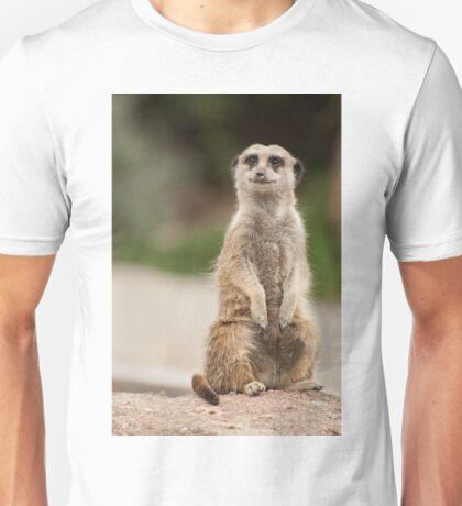 0334 Meerkat  T-Shirt