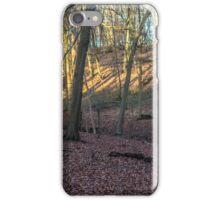 Light and shadows in Great Wood, Hambleden, Buckinghamshire iPhone Case/Skin