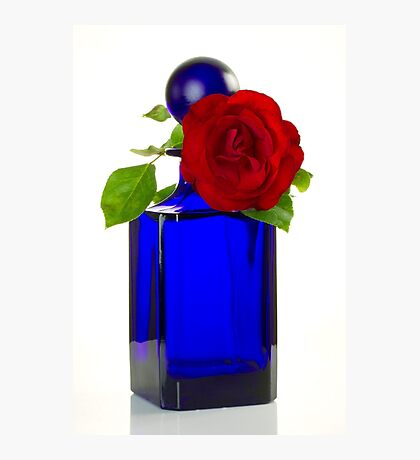 Red Rose on an Antique Bottle Photographic Print