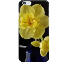 Narcissus on a Blue Bottle iPhone Case/Skin