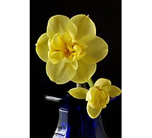 Narcissus on a Blue Bottle Photographic Print