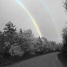 Double Rainbow Over Fall Trees by Martha Medford