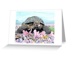 Roxy the Turtle Greeting Card