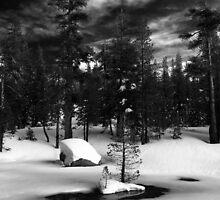 Woods Lake by PaigeGodfrey