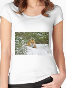 Red Fox In Snow Women's Fitted Scoop T-Shirt
