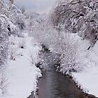 Scenes from a Snowy River by Rae Tucker