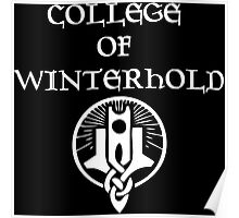 Skyrim College of Winterhold Poster