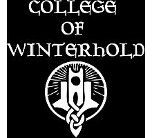 Skyrim College of Winterhold Photographic Print