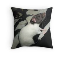 Zippy rat Throw Pillow