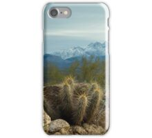 Winter in the Desert iPhone Case/Skin