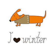 Winter dachshund Photographic Print