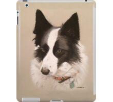 Mia the stunning Border Collie iPad Case/Skin