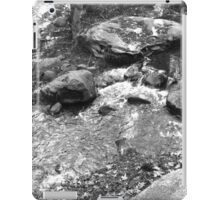 Black and White Scenic Stream  iPad Case/Skin