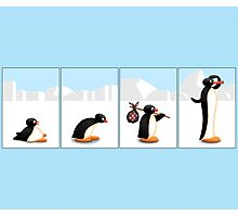 The penguin evolution Photographic Print