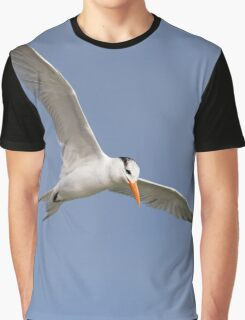 Royal Tern in Flight Graphic T-Shirt