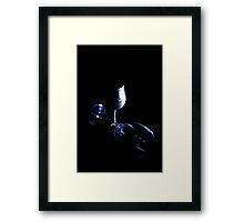 Low light two Framed Print
