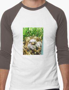 baby birds in a fern Men's Baseball ¾ T-Shirt