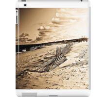 Old Lake Michigan iPad Case/Skin
