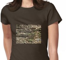 stone wall center Womens Fitted T-Shirt