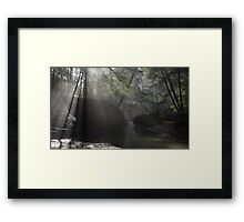 Sunbeams in Hocking Hills Gorge Framed Print