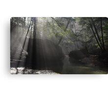 Sunbeams in Hocking Hills Gorge Canvas Print