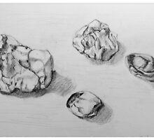 Rocks from the Beach by Barbara Wyeth