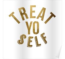 Treat Yo Self Parks and Rec Poster