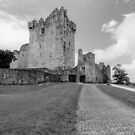Ross Castle , Kerry , Ireland  by Martina Fagan
