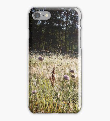 Sunrise through a grassy spider webs iPhone Case/Skin