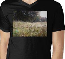 Sunrise through a grassy spider webs Mens V-Neck T-Shirt