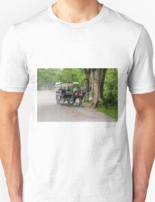 Kerry Scene  Unisex T-Shirt