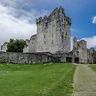 Ross Castle, Kerry ,Ireland  by Martina Fagan