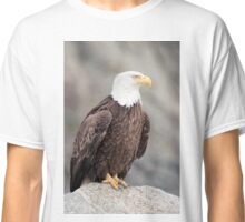 Bald Eagle Settling In Classic T-Shirt