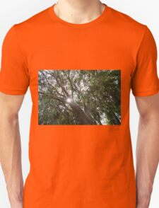 Look Up to the Sky and See T-Shirt