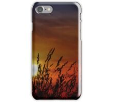 Nocturnal Sunset iPhone Case/Skin