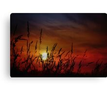 Nocturnal Sunset Canvas Print