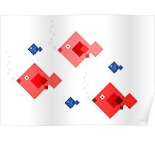 Red and blue fish Poster