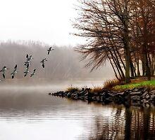 Fog On The Lake by TOM YORK