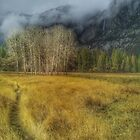 Yosemite Falls at Ahwahnee Meadow by EricKulikoff