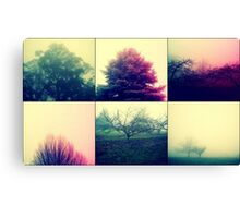Foggy Impact Canvas Print