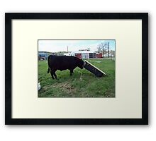 Exercise is Important! Framed Print