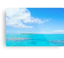 Tropical island lagoon. Metal Print