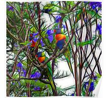 Abstract Beautiful Rainbow Lorikeets Poster