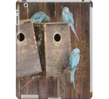 Indian Ringneck Parakeets at World of Birds South Africa iPad Case/Skin