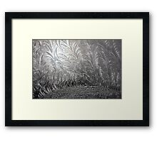 Ice Patterns 3 Framed Print