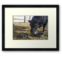 Lessons for the Trainee Framed Print