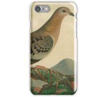 Pigeon iPhone Case/Skin