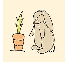 Bunny and carrot Photographic Print