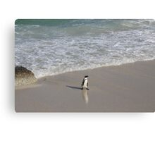 Penguin 3-Way in South Africa Canvas Print